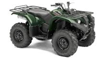 GRIZZLY 450 '2015
