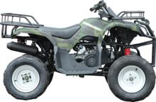 Квадроцикл WELS PURGA 170