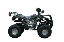 Квадроцикл WELS ATV WELS125 LADOGA